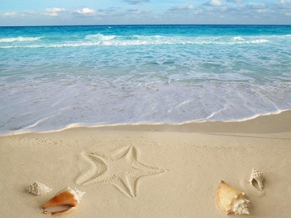 Mơ thấy biển là điềm báo lành hay dữ?