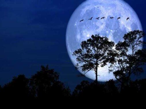 Ngủ mơ thấy mặt trăng là điềm báo hung hay cát ? Đánh số mấy ?