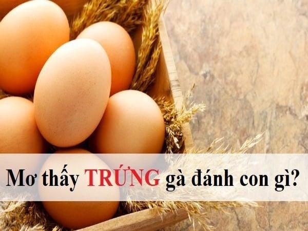Mơ thấy trứng gà điềm báo lành hay dữ?