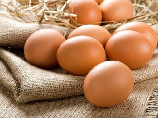 Nằm mơ thấy trứng gà là điềm báo gì đánh số mấy